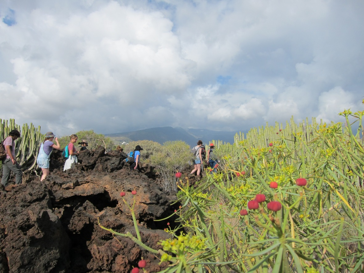 Badlands, Tenerife. Credit: EJ McIntosh